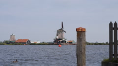 Zaanse Schans Netherlands windmill in the background of a lake with a duck Stock Footage