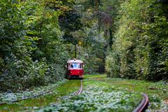 Stock Photo of red tram rides through the trees in park