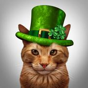 Saint Patricks Day Cat Stock Illustration