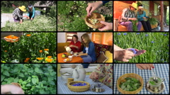 Women gather herbs and drink healthy tea. Collage. Stock Footage