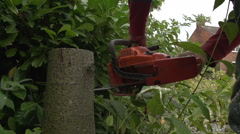 Pensioner Cutting Down Small Tree With Chainsaw Stock Footage