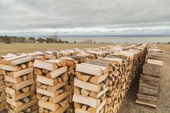 Four Stacks of Firewood Stock Photos