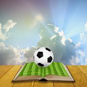 Open book with soccer filed - stock photo