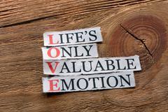 love acronym - stock photo