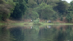 School children walking along river bank. Stock Footage