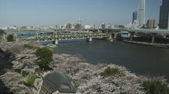 Cherry Blossom Time in Tokyo in 4k Stock Footage