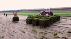 Loading pallets of grass turf. - stock footage