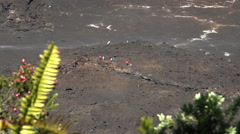 walking people in volcano crater - Hawaii - stock footage