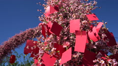 Traditional Chinese wishing tree. Lot of sticky note on a small tree. Stock Footage