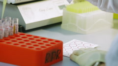 A Doctor Wearing Rubber Gloves in the Laboratory Takes Blood Samples and Stock Footage