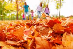 Autumn maple leaves close-up and family on back - stock photo
