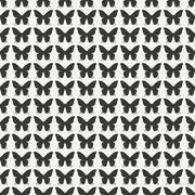 Monochrome abstract seamless pattern with butterfly. Wrapping paper. Scrapbook Stock Illustration