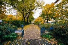 Walkway and autumn color at Helmholtzplatz, in Prenzlauer Berg, Berlin, Germa Stock Photos