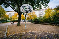 Basketball hoop and autumn color at Helmholtzplatz, in Prenzlauer Berg, Berli Stock Photos