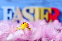 Toy chick, feathers and word easter Stock Photos