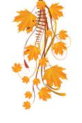 Stock Illustration of Autumn ornament with maple leaves