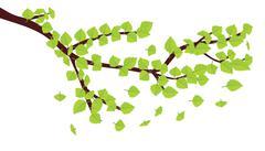 Green leaves on brunch - stock illustration
