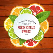 Banner with stylized citrus fruit and splashes - stock illustration