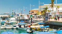 Cabo San Lucas Bustling Harbor Marina Scene Stock Footage