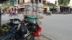 Gold fish on the back of a motorbike - stock footage