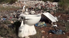 Toilet bowl at the junkyard Stock Footage
