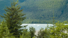 Tongass National Forest at Mendenhall Glacier with Floating Icebergs Stock Footage