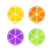 Set of glossy fruit slices on white Stock Illustration