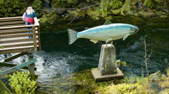 Ketchikan Alaska Salmon Art Statue with Tourists Looking at Creek Stock Footage