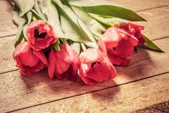 Fresh red tulip flowers bouquet on wood. Wet, morning dew. Stock Photos