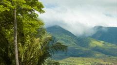 Maui Island Hawaii Nature and Mountains Stock Footage