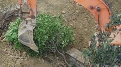 Crawler excavator during earthmoving. Deforestation concept  - stock footage