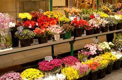 Flower stall Stock Photos