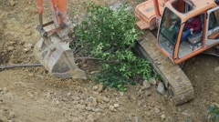 Small saplings cleaned with the teeth on excavator bucket using them like a rake Stock Footage