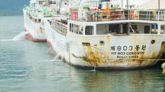 Old Korean Ships in Port of Suva Fiji Stock Footage