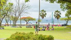 Fiji Locals Enjoying Suva City Park - stock footage