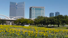 Fort Worth Skyine from Trinity Trails park w/ flowers Stock Footage