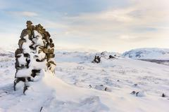 Thingvellir National Park Iceland Stock Photos