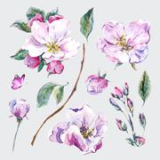 Set of watercolor Spring Nature elements Stock Illustration
