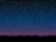 Vector. Silhouette grass. Starry Sky. Eps 10. - stock illustration