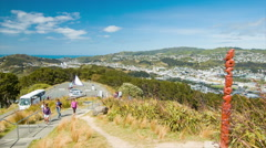 Wellington NZ Landscape from Mount Victoria Lookout Stock Footage