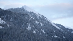 Tree Covered Mountainside Stock Footage