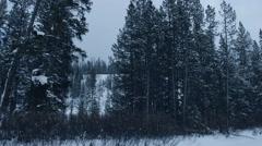 Winter Mountain Creak Stock Footage