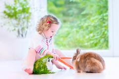 Little girl playing with a bunny - stock photo