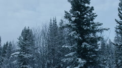 Driving Through Desolate Snowy Road Stock Footage