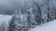 Top of the Snowy Mountain Stock Footage
