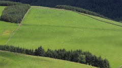 Summer light over the Tweed Valley, Scottish Borders. Stock Footage