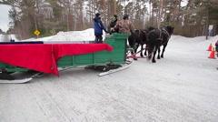 Big horses pull big sleigh Stock Footage