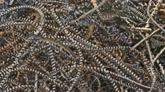 Metal rust texture shavings mountain background plant waste Stock Footage