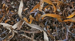 Rust texture shavings mountain metal plant background waste Stock Footage