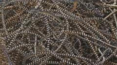 Metal rust texture shavings mountain background Stock Footage
